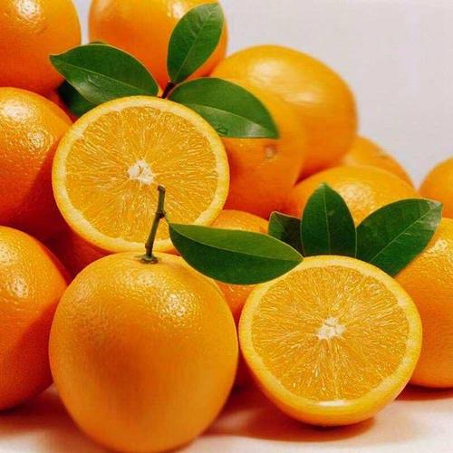 橙子 (2).jpg